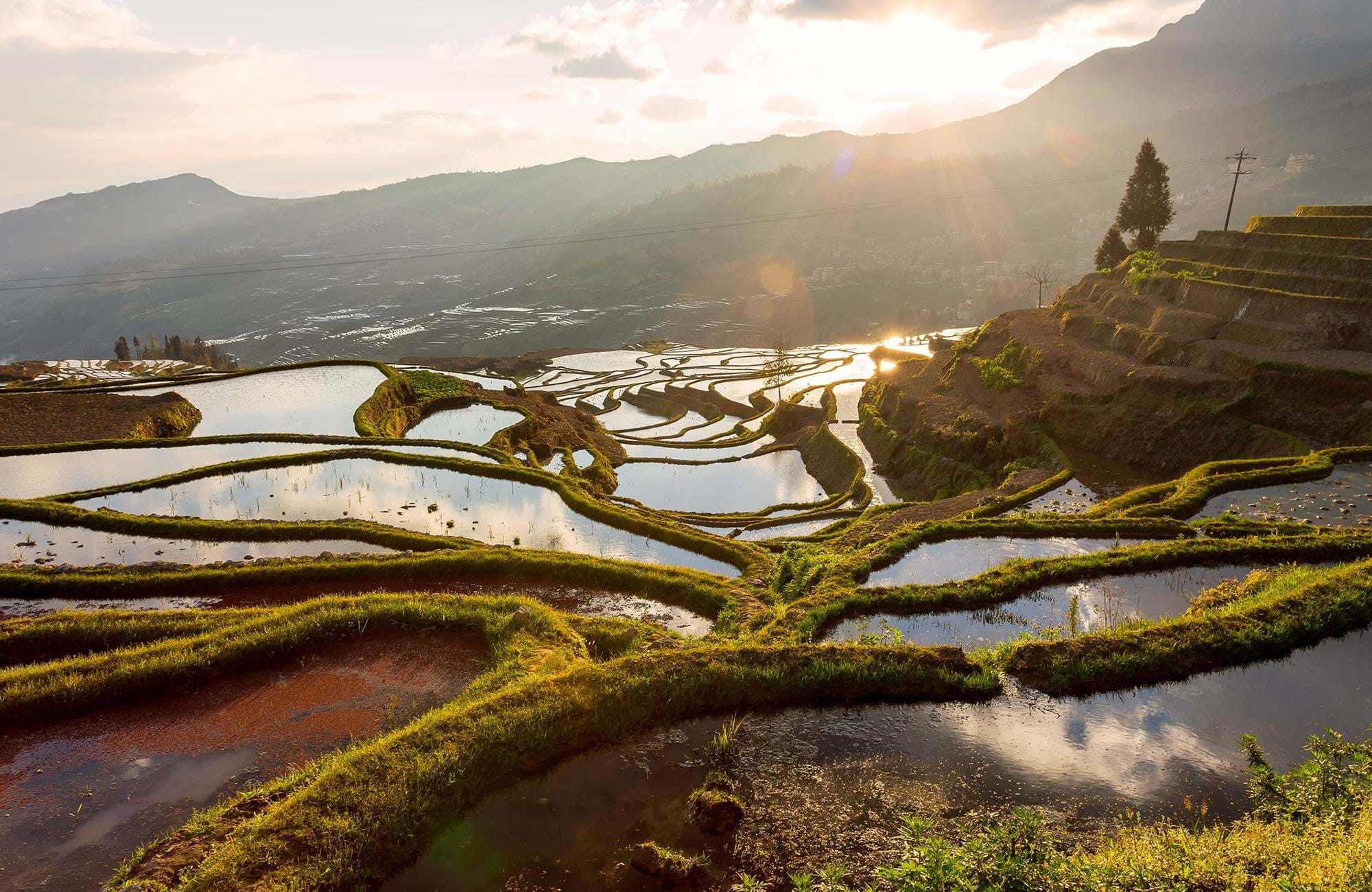 china-yuan-yang-terraced-rice-field-duo-yi-shu-village