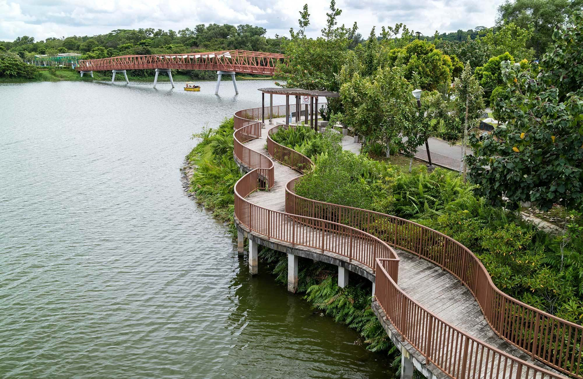 singapore-punggol-waterways-lorong-halus-bridge