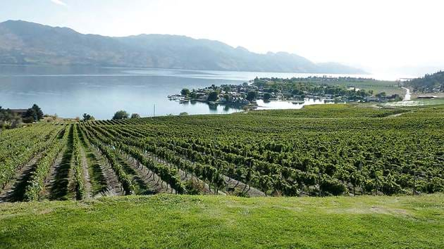 lake-okanagan-vineyards_1280x720_for_navi_web